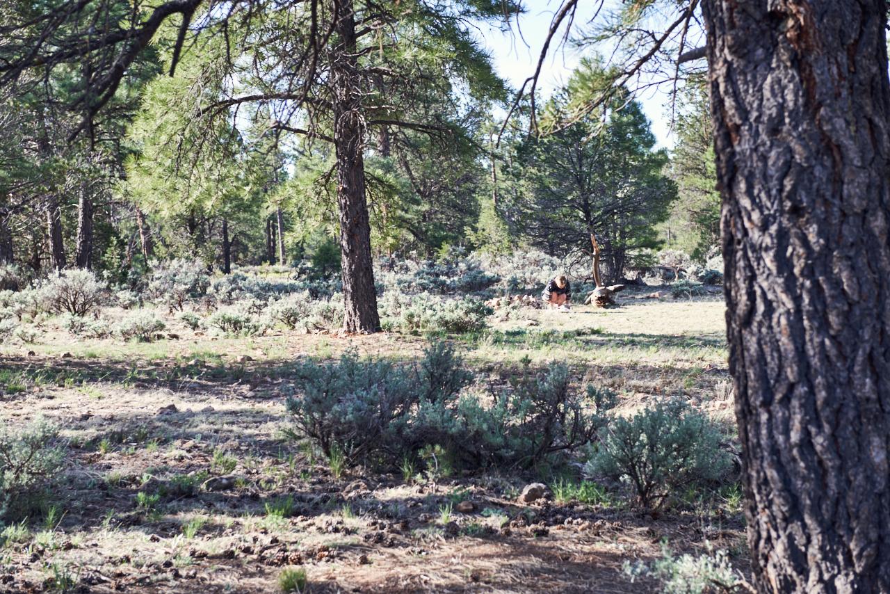 Road Trip - Arizona - Camping - Into The Eco - Back To Basics