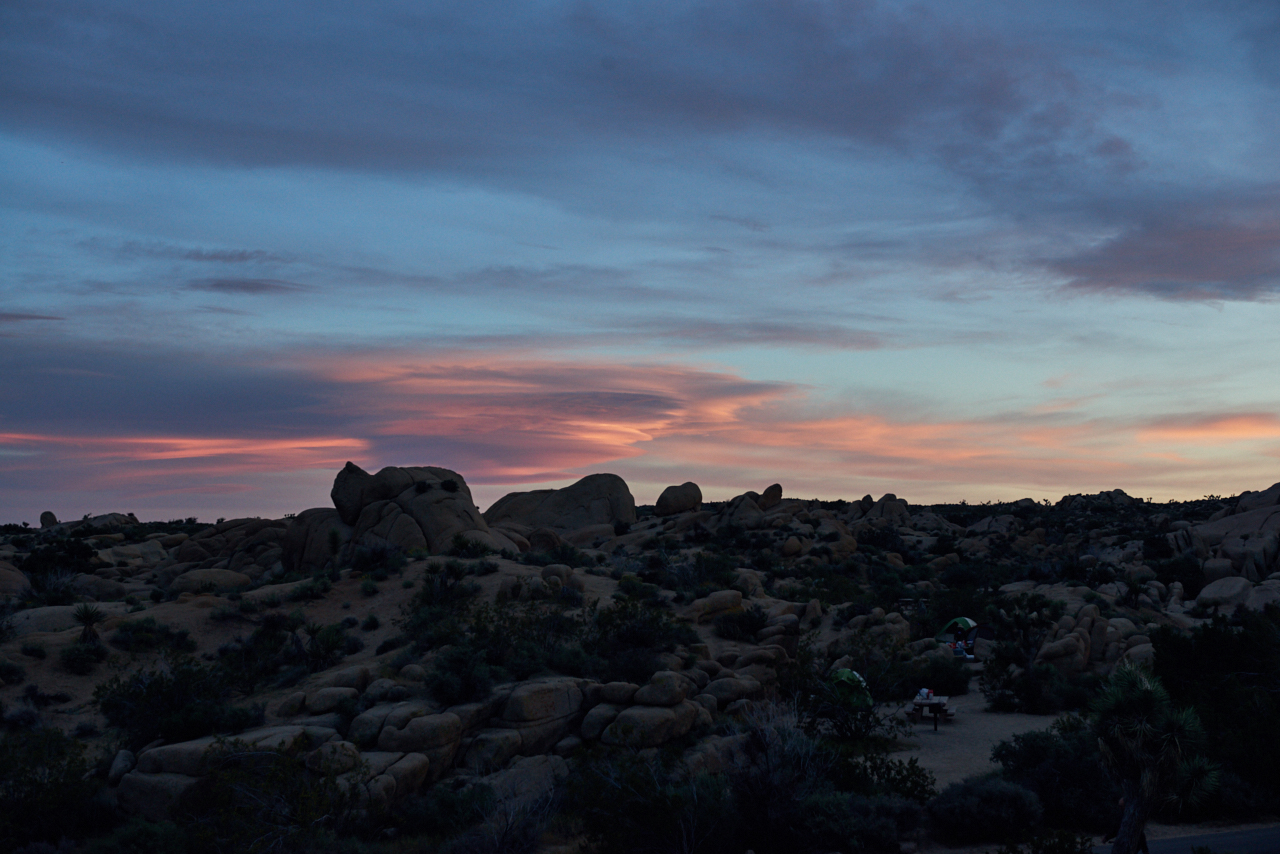 Joshua Tree - Sunset - Into The Eco - American Adventure - Back To Basic